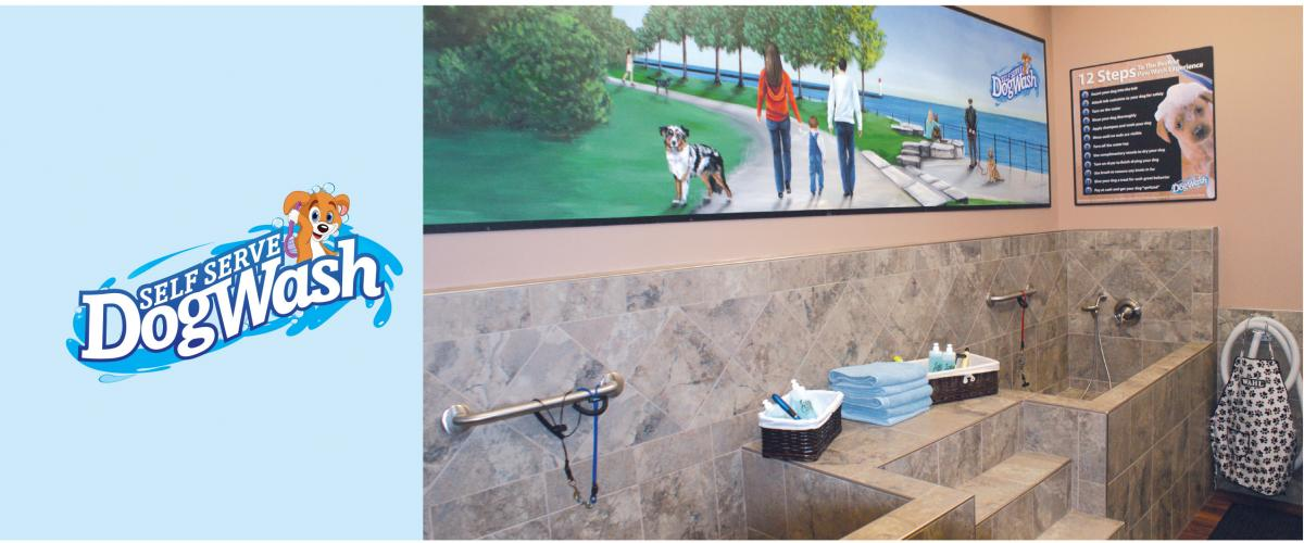 Dog wash station wasedajp home deco inspirations dog wash station excellent automatic dog wash opens in solutioingenieria Image collections